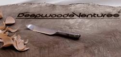 Deepwood Ventures
